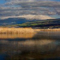 vit5 Agamon Hula National Park :: Vitaly Faiv