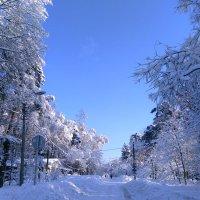 Зима в Клязьме :: Аlexandr Guru-Zhurzh