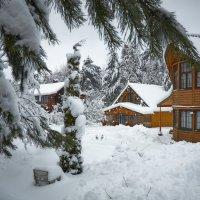 Зима на даче. :: Алексей Caveman