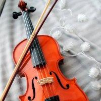 Скрипка :: Евгения Сенченко