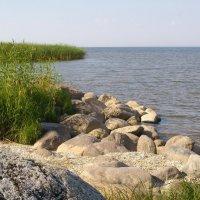 Каменистый берег :: lady v.ekaterina
