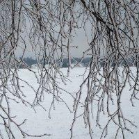 Ледяной ландшафт... :: Mariya laimite