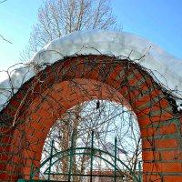 Март, а всё зимний интерьер. :: Михаил Столяров