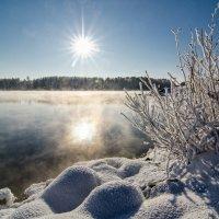 мороз и солнце )) :: Игорь Козырин