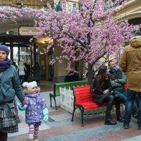 Весна в ГУМе :: Владимир Безбородов