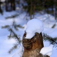 Март! Медведи стали просыпаться )))) :: Роман Дудкин