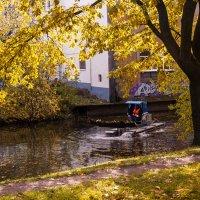 Осень :: Елена Кириллова