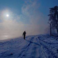 Прогулка в морозный полдень :: Анатолий Иргл