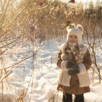 Морозным утром :: Анастасия Исайкина