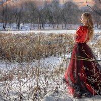 В предвкушении весны :: Диана Куракина