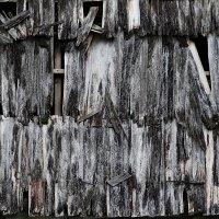 старая крыша. :: Николай Семёнов