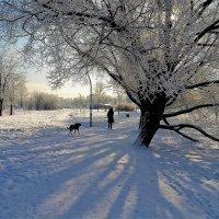 Свет и тени... :: Sergey Gordoff