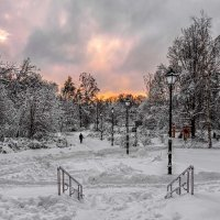 Аллеи в парке зимой. :: Василий Ярославцев