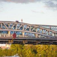 На мосту :: Elena Ignatova