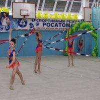 Региональные соревнования по художественной гимнастике :: OLLES