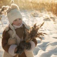 Морозное утро :: Анастасия Исайкина