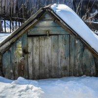 winter snow :: Юлия Денискина