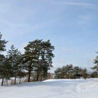Зимний март. :: Михаил Столяров
