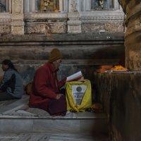 Бодхгая, Индия :: Ирина Малышева