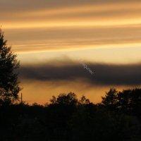 Последние лучи солнца :: Лариса Брагунец