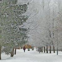 Зимний денёчек :: Raduzka (Надежда Веркина)
