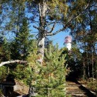 Старинный маяк Стирсудден :: Елена Павлова (Смолова)