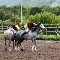 Борьба на лошадях. :: Anna Gornostayeva
