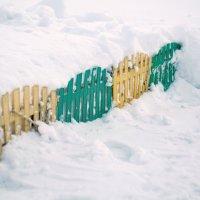 Весна на даче. Вот и забор откопали. :: Михаил Полыгалов