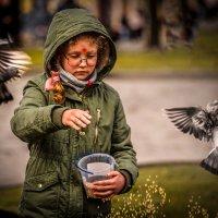 Девочка и голуби. :: Евгений Мокин