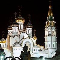 Церковь Александра Невского :: Елена Бунак