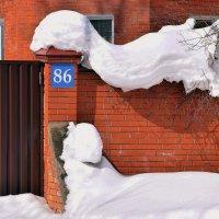 Все места заняты, как в поезде! :: Татьяна Помогалова