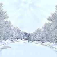 весна-зима :: Наталия П