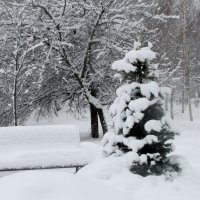 Зимний этюд :: Жанна