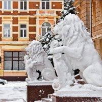 Левам холодно :: Степан Карачко