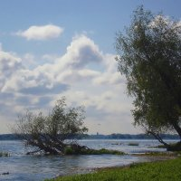 Берег реки Волги :: Михаил Пахомов