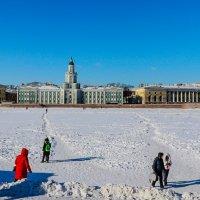 ...гуляем по Неве.. :: Юрий Слепчук