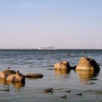 На море всё спокойно. :: VasiLina *