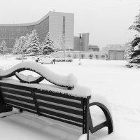Выпал снег :: Валерий Михмель