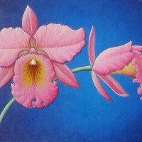 Орхидея :: Марина Чайкина