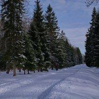 ну еще разок на лыжах.... :: Валентина Папилова