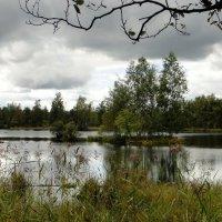 Озеро в  Лепсари :: Елена Павлова (Смолова)