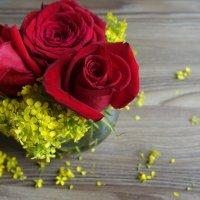 Цветы :: Елена