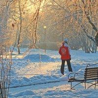 Прогулки с декабрем :: Екатерина Торганская