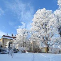 Зимний день. :: ИРЭН@ Комарова
