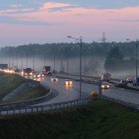 вечерний туман :: Николай Филимонов