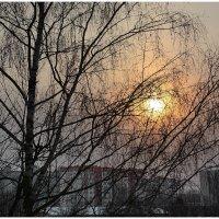 Утро в городе...... :: Paparazzi