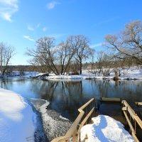 Весна на реке :: Ninell Nikitina