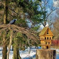 У своего домика... :: Sergey Gordoff