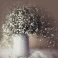 Гипсофила в вазе :: solv13 Лариса
