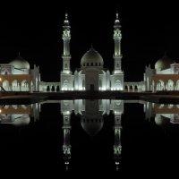 Белая мечеть г. Булгар :: Николай Филимонов